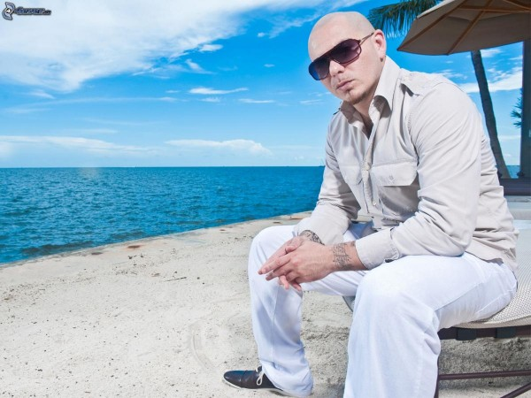 pitbull maldives