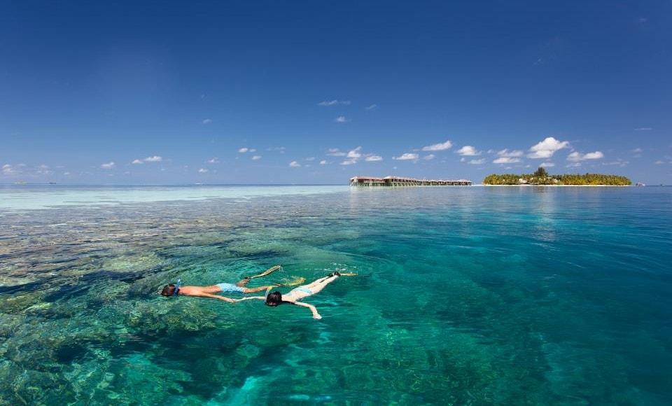 vilamendhoo snorkeling 2