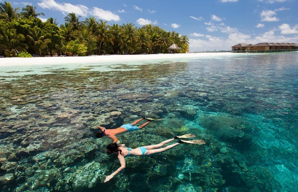 Best Maldives Resorts For Snorkeling - Top 10 House Reefs 2018