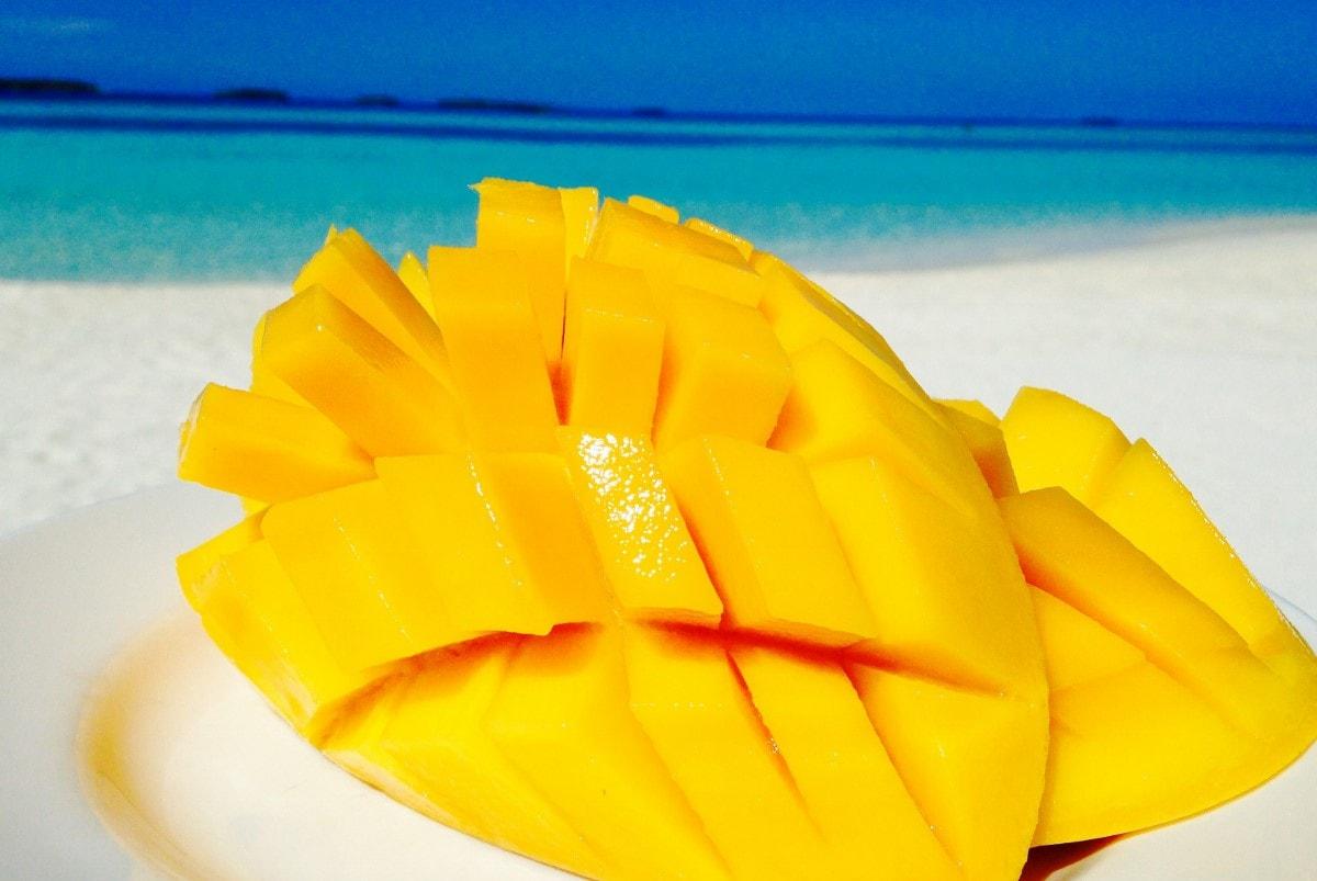 mango-maldives