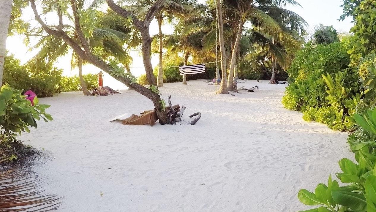 bikini beach thoddoo