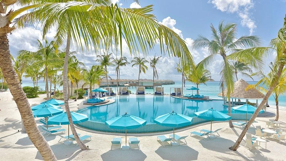 kandima beach club palm trees