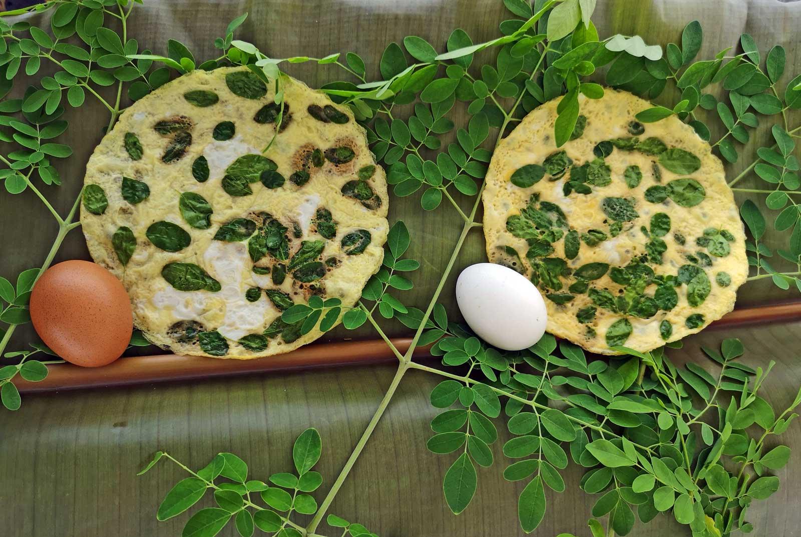 moringa leaf omelette